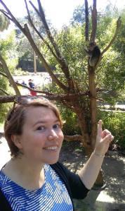 15a-clare-and-koala
